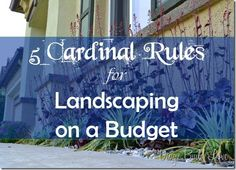 5 Cardinal Rules for Landscaping on a Budget- by Design Build Love