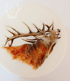 Red Stag hand-painted cake  PAINTED CAKE http://www.sweetdeer.co.nz