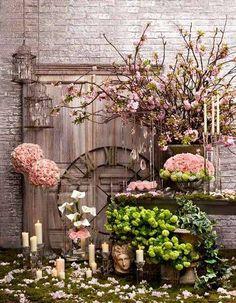 L'image contient peut-être : 1 personne, plante, fleur, table et plein air
