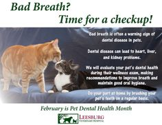 Pet kisses are great, but not with stinky breath!  Bad breath may be a sign of dental disease.
