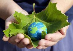Terra fecharia hoje para balanço se precisasse repor recursos no msm período http://www.bluebus.com.br/se-o-planeta-usasse-apenas-os-recursos-q-conseguisse-repor-no-msm-periodo-terra-fecharia-hoje-p-balanco/