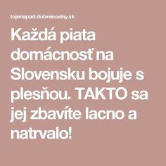 Každá piata domácnosť na Slovensku bojuje s plesňou. TAKTO sa jej zbavíte lacno a natrvalo!