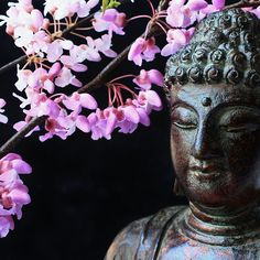 Buddha 21