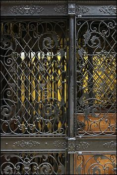 One of the Bradbury Building's open-cage elevators. Bradbury Building, Art Nouveau, Elevator Design, Glass Elevator, Cigarette Girl, Victorian Life, Wrought Iron Gates, Steampunk Design, Antique Iron