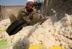 Un uomo lavora alla preparazione del cotone a #Peshawar, in #Pakistan
