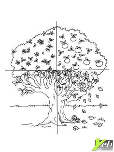 Body Parts Preschool, Teaching Weather, Flower Pattern Drawing, Free Worksheets For Kids, Love Coloring Pages, English For Beginners, Tree Study, Outline Art, Kids English