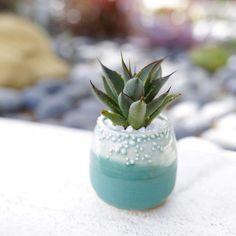 Awesome little blue pot by the incredibly talented @unurthwonder!! // #dallavita #unurth #bluebeauty #collaboration