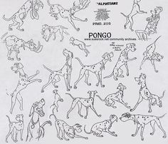 Living Lines Library: One Hundred and One Dalmatians (1961) Pongo model sheet