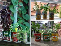 ..una lattina di una bibita, dei barattoli di salsa.. diventano originali vasetti per le nostre piante!  www.ortopertutti.it