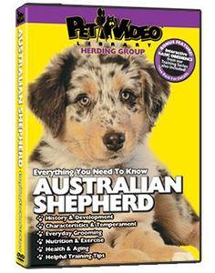 AUSTRALIAN SHEPHERD DVD  Dog  Puppy Training Bonus DoggyDVD ** Click on the image for additional details.