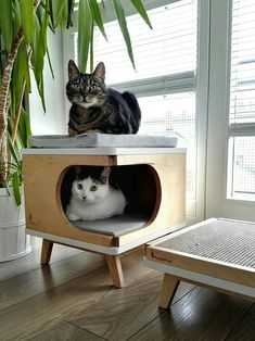 Stylish plywood cat house modern cat bed gift for cat lover Modern Cat Furniture, Pet Furniture, Modern Cat Beds, Furniture Market, Gift Box Design, Cat Playground, Cat Room, Cat Decor, Cat Tree