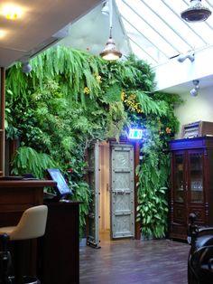 Mur végétal sous verrière où l'exubérance des plantes nous immergent dans la forêt amazonienne avec le Nephrolepis et l'Asparagus. Collection Jungle Amazone, Les Jardins de Babylone.