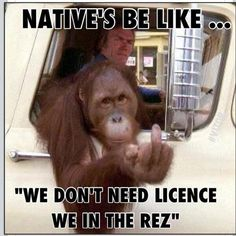 Native Humor: 10 Hilarious 'Natives Be Like' Observations - ICTMN.com