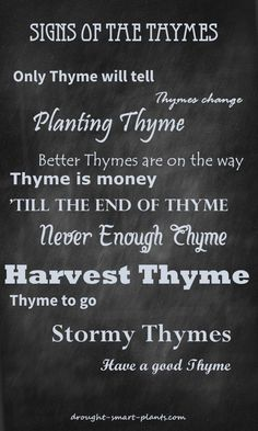 Signs of the Thymes - funny sayings all about Thyme...  Gardening | Funny Garden Signs