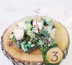 moss wedding centrepieces rustic tree slice
