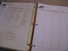 Weekly binders & planning
