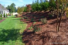 landscaping on a sloping hill via Worthing Court blog