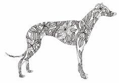Greyhound doodle | Flickr - Photo Sharing!