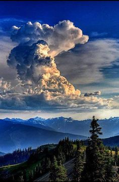 Carpathian Mountings , W Ukraine,