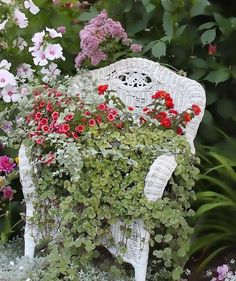 Creative Green Ideas to Make Flower Stands Recycling Wood Chairs for Yard Decorations Cheap Flowers, Unusual Flowers, Beautiful Flowers, Old Wicker Chairs, Wood Chairs, Eames Chairs, Bar Chairs, Chair Planter, Wicker Planter