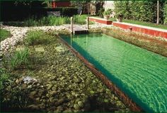 A natural alternative to the chlorine with no chemical treatment. This natural environement pool is the pool of the future. It is naturally heated. The price of this pool is around per meter square. The cost for one year for electricity and for the water. Swimming Pool Pond, Natural Swimming Ponds, Swiming Pool, Natural Pond, Piscine Diy, Pool Cleaning, Cool Pools, Pool Designs, Water Features