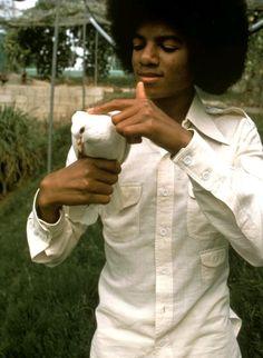 Michael Jackson in Jamaica 1975