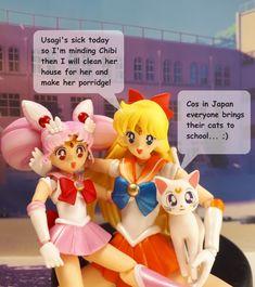 Sailor Moon, Princess Peach, Chibi, Bring It On, Japan, Fictional Characters, Fantasy Characters, Sailor Moons, Japanese