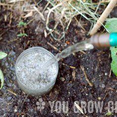 Make Your Own Pop Bottle Drip Irrigation System