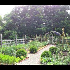Deborah_Needleman_Garden