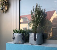 Welcome your guests with lovely planters Big Garden, Herb Garden, Big Plants, Potted Plants, Urban Planters, Green Bag, Flower Beds, Planter Pots, Bloom