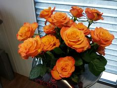 #Rose #Rosa #Confidential; Available at www.barendsen.nl