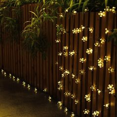 New Solar String Fairy Lights With 30 Rose Flower Warm White Colour For Outdoor