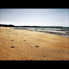 La spiaggia di porto palo di Menfi, oggi. #Beach #Sicily #Sea