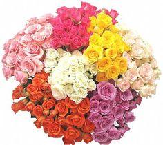 Spray Roses Types Of Flowers, Fresh Flowers, Spray Roses, Flower Show, Showers, Floral Wreath, Wreaths, Color, Flower Types