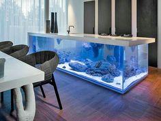The aquarium inside Bill Gate\'s house. I would definitely live ...