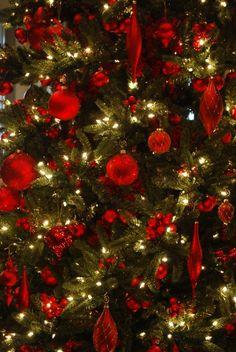 Рождество В Зеленом Цвете, Рождество За Городом, Рождественские Цвета, Веселого Рождества, Рождественские Поделки, Рождественские Венки, Рождество В Старые Времена, Свидания, Вечеринка