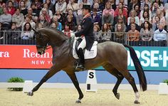 15 reasons why dressage is better than showjumping Read more at http://www.horseandhound.co.uk/features/14-reasons-dressage-better-showjumping-533195#Sw8AB1Pso5VL0Hsi.99