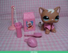 Littlest Pet Shop LPS Rare Cat Pink Jacket Accessories Great 4 Gift Excellent Little Pet Shop, Little Pets, Barbie Ballet, Lps Popular, Rare Lps, Lps Cats, Lps For Sale, Custom Lps, Lps Littlest Pet Shop