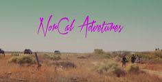 NorCal Adventures   Orangatang Wheels