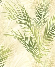 Bamboo Palm Green wallpaper by Albany