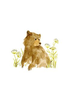 Watercolor Bear - Sitting in a Field of Fennel - Original Illustration Print on Etsy, $10.00