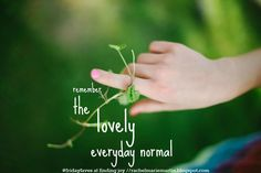 remember the lovely everyday normal - a weekly link up celebrating the favorite thing moments in life. #fridayfaves {at finding joy}