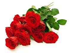 Bello ramo de rosas