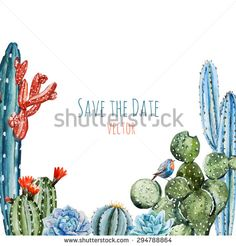 watercolor vector frame cactus with flowers, isolated object, botanical frame