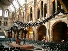 Naturual History Museum, London