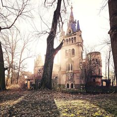 An abandoned mansion in the European countryside. Photo by Leon Beu. by itsabandoned