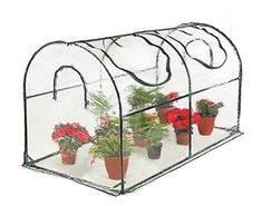 Seven colors house Reinforced Portable Mini Greenhouse x x 39 inches Vegetable Plant Mini Arc Greenhouse with Clear Cover for Indoor or Outdoor Plants