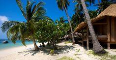 Los bungalows de Haadtien Beach Resort en la isla de Koh Tao son únicos. El resort está situado en una bahía privada rodeada por una selva-oasis natural, colinas de granito y una pintoresca laguna azul. Los bungalows están decorados con la simplicidad de la madera tradicional tailandesa. La isla de Koh Tao tiene una superficie de 13 km cuadrados, escondiendo bajo ésta un tesoro submarino: sus aguas transparentes y la abundancia de peces exóticos.