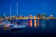 Find some fun things to do in San Diego at night - things to do and place to go only in summer or that are best in summer
