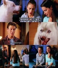 phoebe and piper and prue and leo Serie Charmed, Charmed Tv Show, Series Movies, Movies And Tv Shows, Tv Series, Charmed Quotes, Phoebe And Cole, Charmed Sisters, Movies